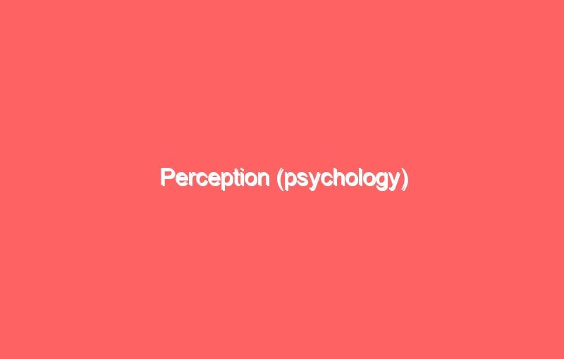 perception psychology 4225