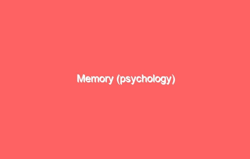 memory psychology 4212